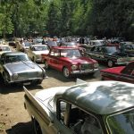 Many Parked Studebakers